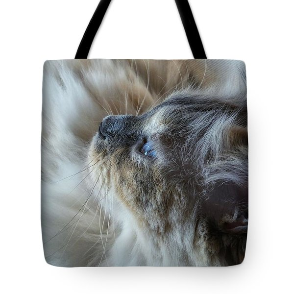 Profile Tote Bag by Karen Stahlros
