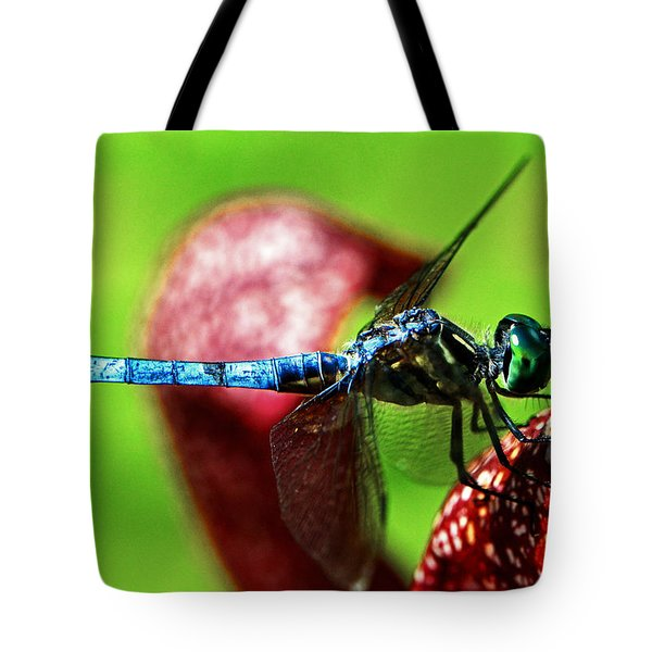 Tote Bag featuring the photograph Profile Of A Dragonfly 003 by George Bostian
