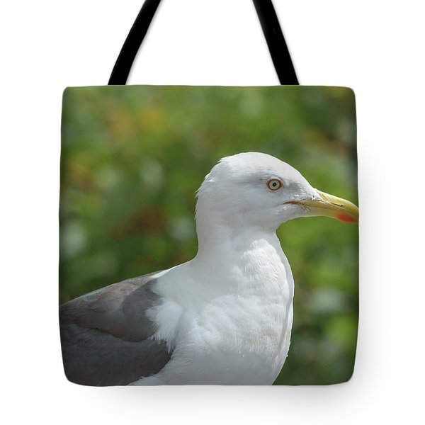 Tote Bag featuring the photograph Profile Of Adult Seagull by Jacek Wojnarowski