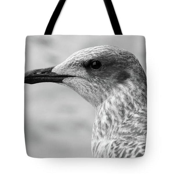 Tote Bag featuring the photograph Profile Of Juvenile Seagull Bw by Jacek Wojnarowski