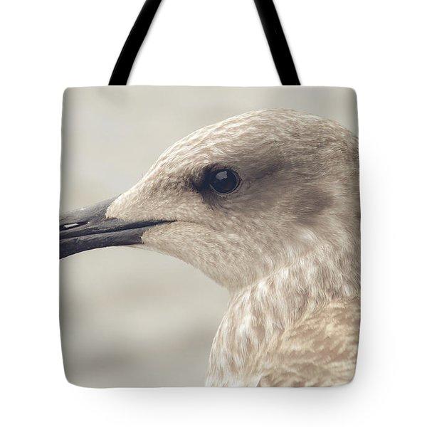 Tote Bag featuring the photograph Profile Of Juvenile Seagull by Jacek Wojnarowski