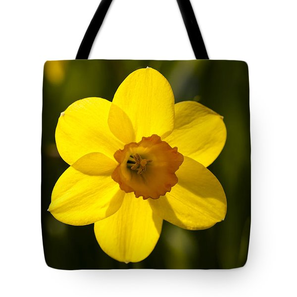 Projecting The Sun Tote Bag