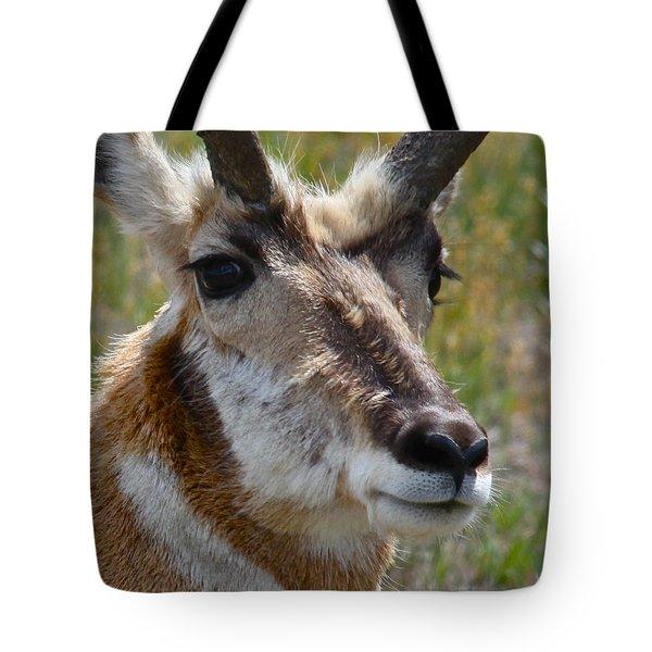 Pronghorn Buck Face Study Tote Bag by Karon Melillo DeVega