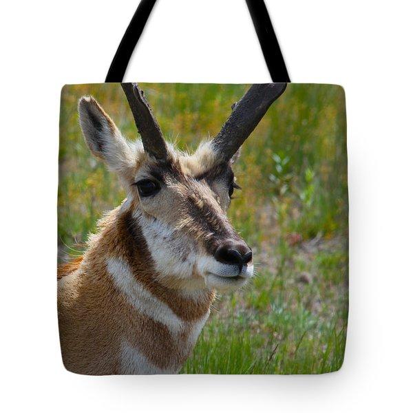 Pronghorn Buck Tote Bag by Karon Melillo DeVega