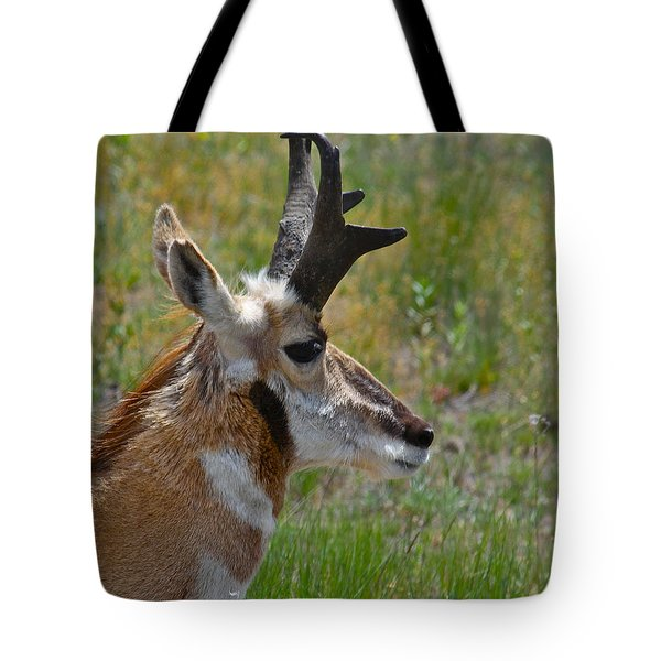 Pronghorn Buck Profile Tote Bag by Karon Melillo DeVega