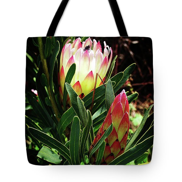 Protea Flower 3 Tote Bag by Xueling Zou