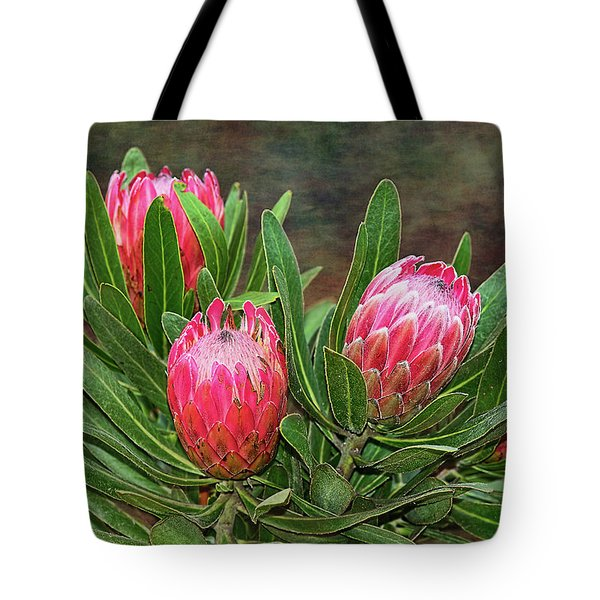 Tote Bag featuring the photograph Proteas In Bloom By Kaye Menner by Kaye Menner