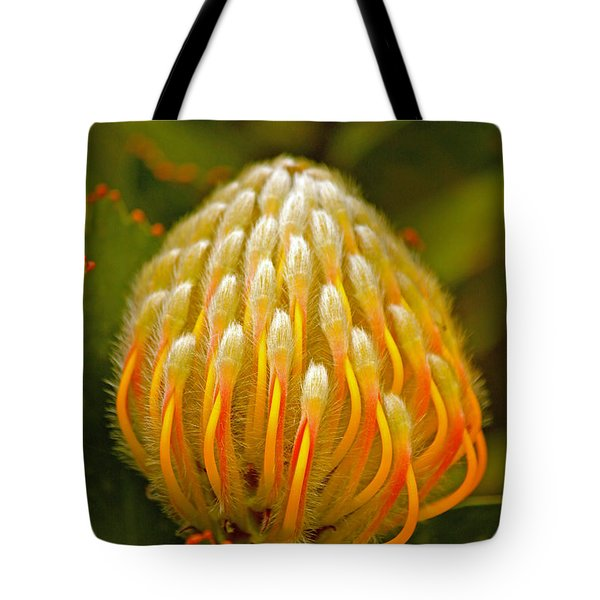 Proteas Ready To Blossom  Tote Bag