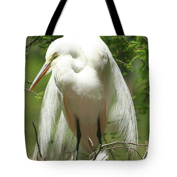 Protecting Tote Bag