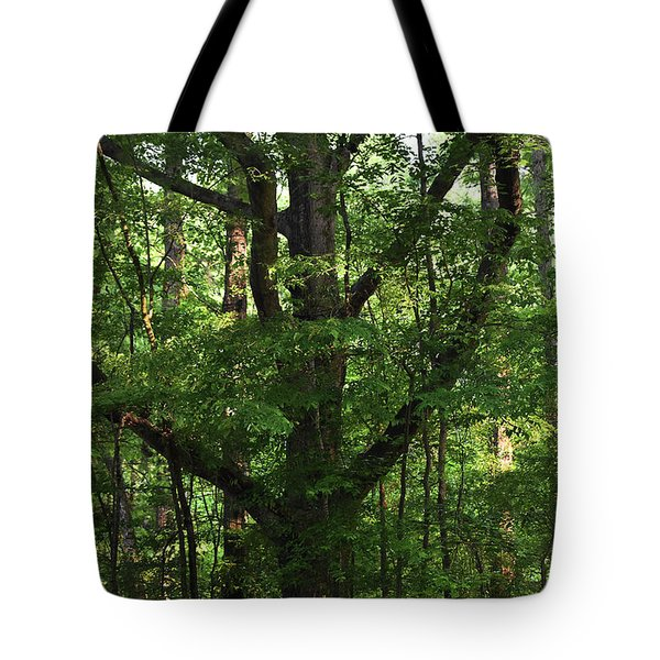 Tote Bag featuring the photograph Protecting The Children by Skip Willits