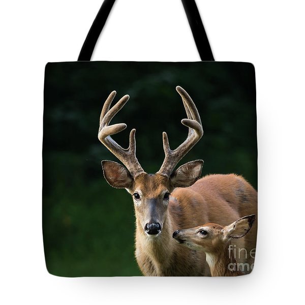 Tote Bag featuring the photograph Protective Dad by Andrea Silies