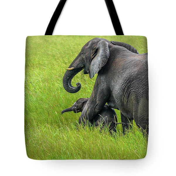 Protective Elephant Mom Tote Bag