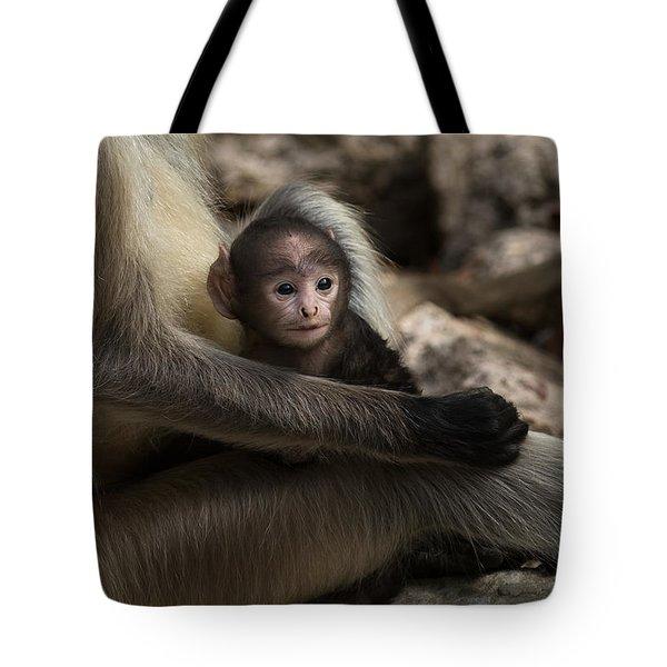 Protectiveness Tote Bag by Ramabhadran Thirupattur