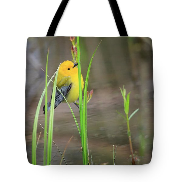 Prothonotary Warbler 5 Tote Bag by Gary Hall