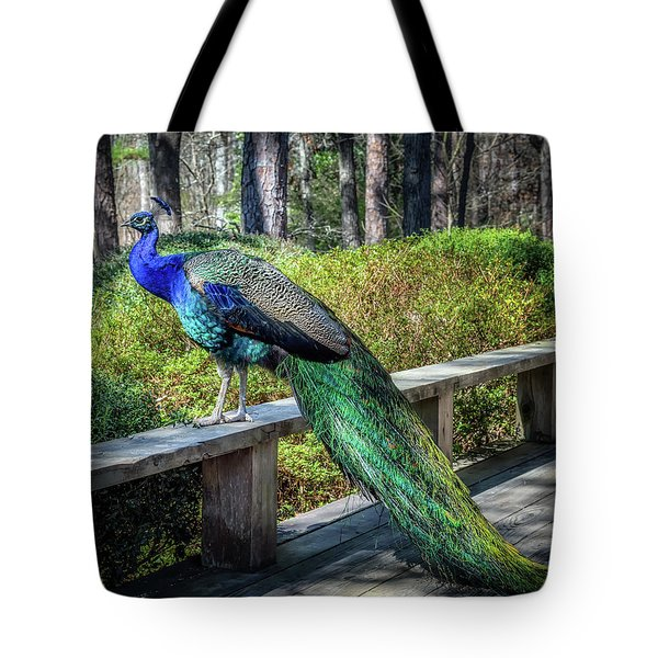 Tote Bag featuring the photograph Proud As A Peacock by James Barber