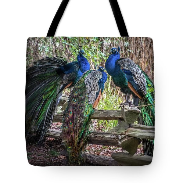 Proud As Three Peacocks Tote Bag