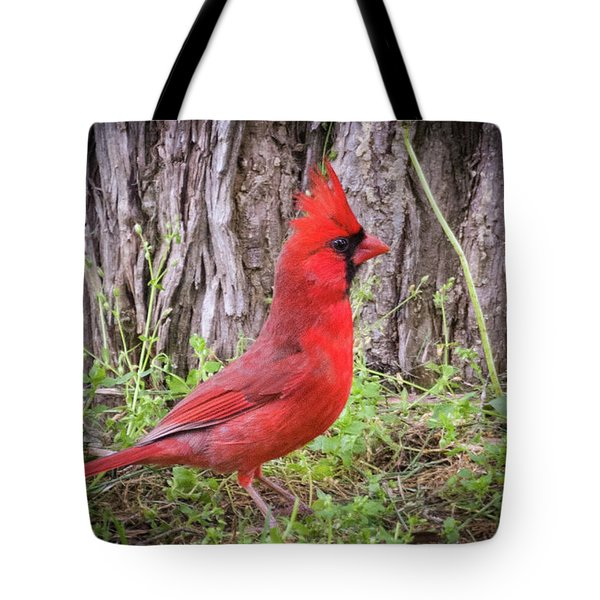 Proud Cardinal Tote Bag