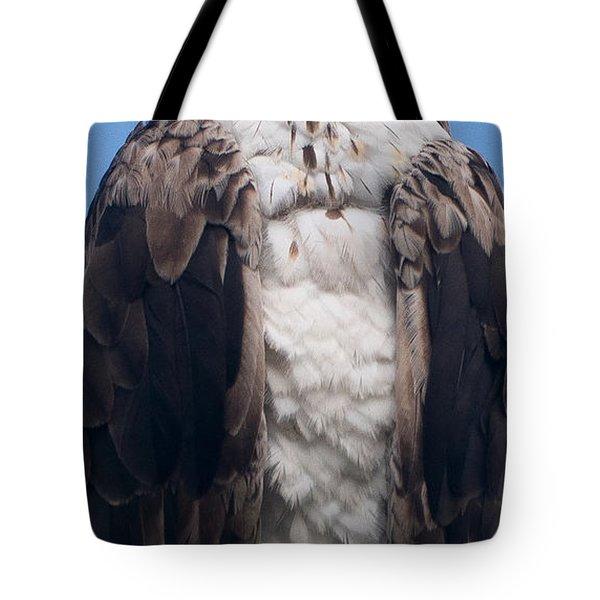 Proud Hawk Tote Bag