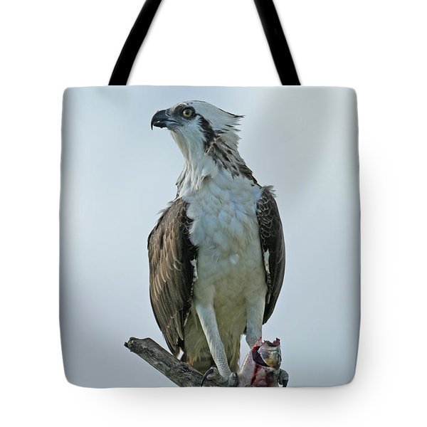 Tote Bag featuring the photograph Proud Hunter by Sally Sperry