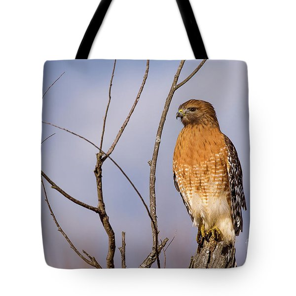 Proud Profile Tote Bag by Charles Hite