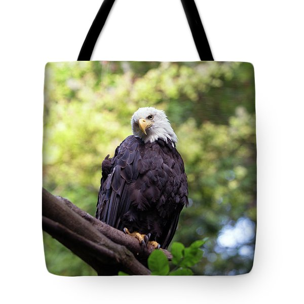 Tote Bag featuring the photograph Proud by Rebecca Cozart