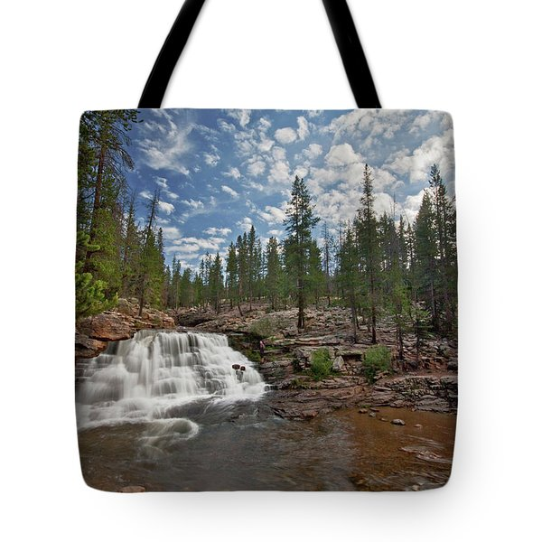 Tote Bag featuring the photograph Provo River Falls by Wesley Aston