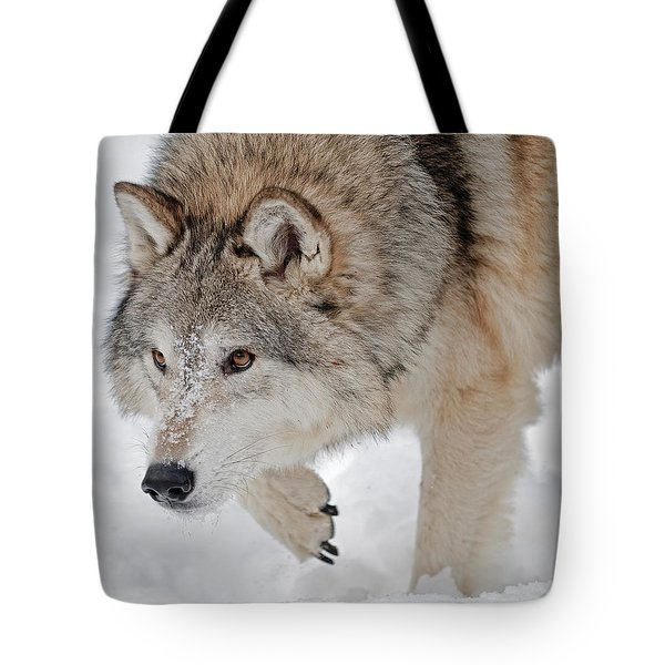 Prowling Wolf Tote Bag