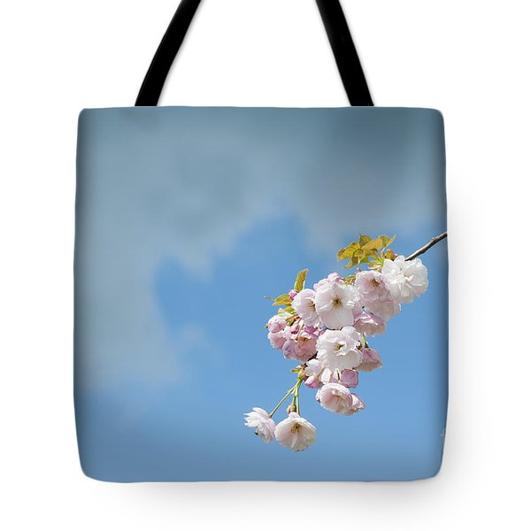 Prunus Ichiyo Blossom  Tote Bag
