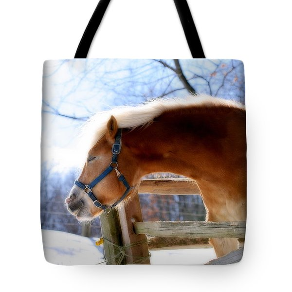 Tote Bag featuring the photograph Pssssssh.....it's Not Cold by Angela Rath