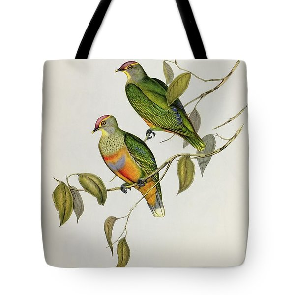 Ptilinopus Ewingii Tote Bag by John Gould