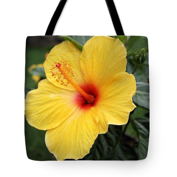 Pua Aloalo Tote Bag by DJ Florek