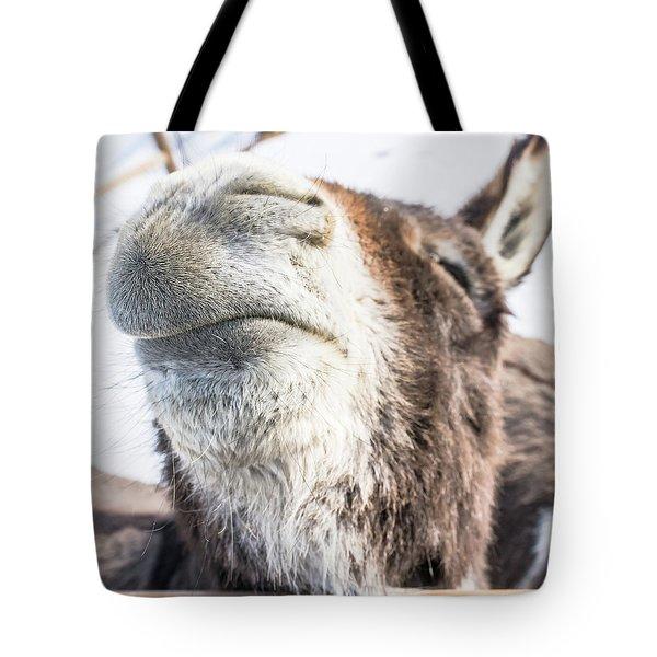Pucker Up, Baby Tote Bag