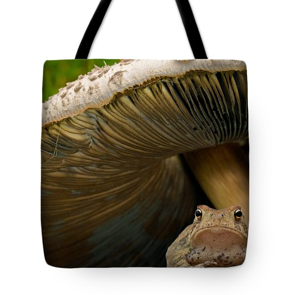 Tote Bag featuring the photograph Pucker Up Princess by Annette Hugen