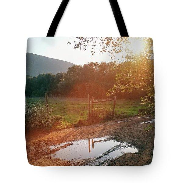 Puddle Of Mud Tote Bag