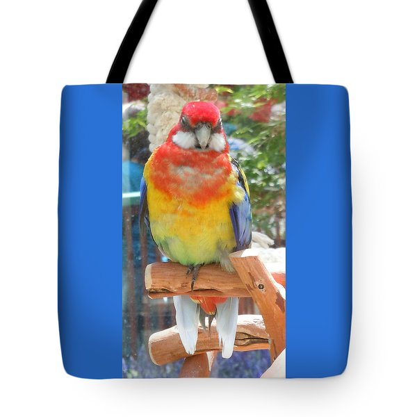 Multi-color Pudgy Budgie Tote Bag