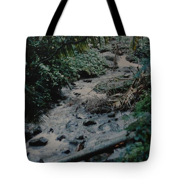Puerto Rico Water Tote Bag by Rob Hans