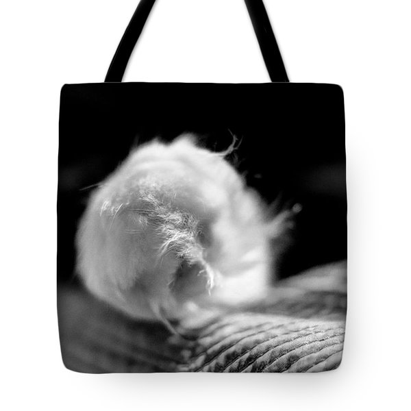 Tote Bag featuring the digital art Puff Paw by Kathleen Illes