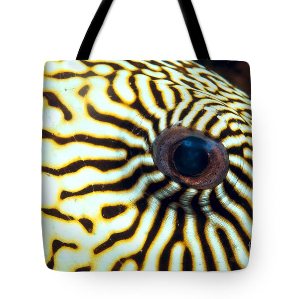 Pufferfish Tote Bag by Dave Fleetham - Printscapes