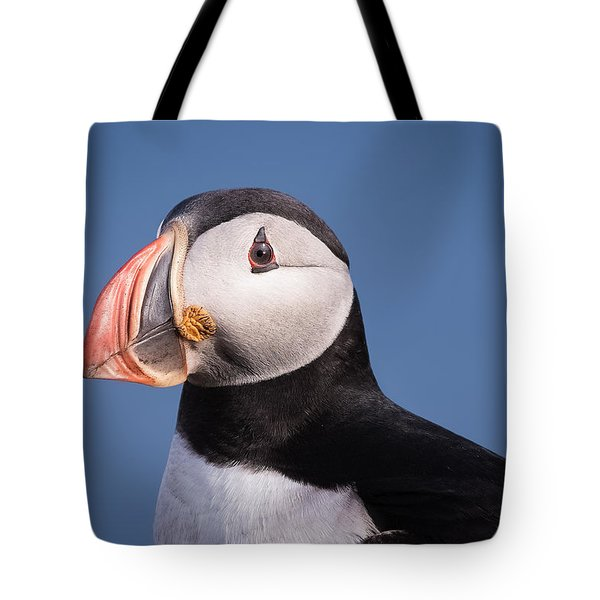 Puffin 1 Tote Bag
