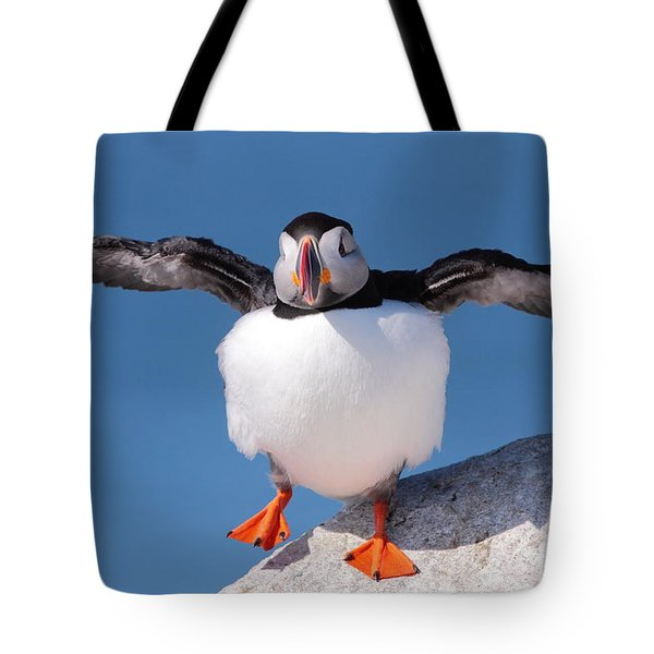 Puffin Dance Tote Bag by Bruce J Robinson