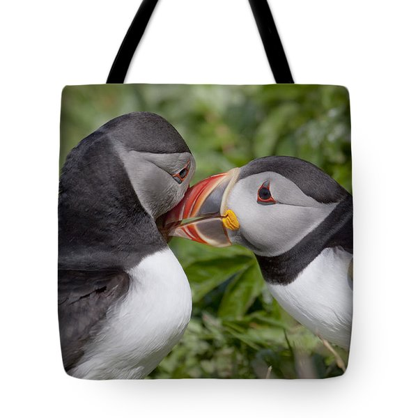 Puffin Love Tote Bag