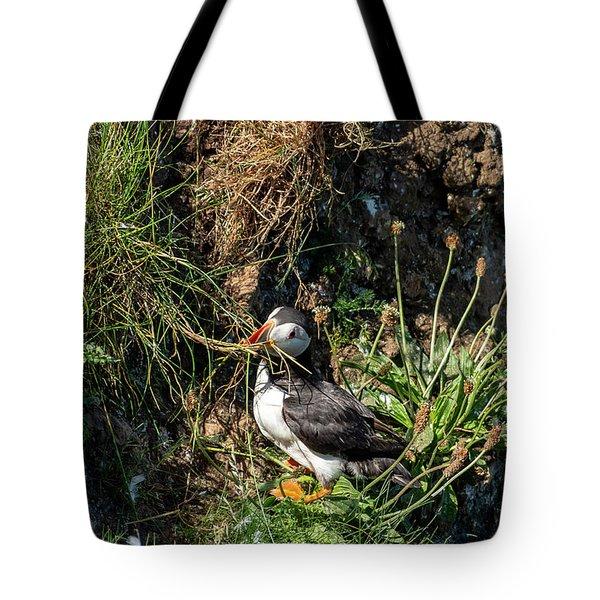 Tote Bag featuring the photograph Puffin On Cliff Edge by Cliff Norton