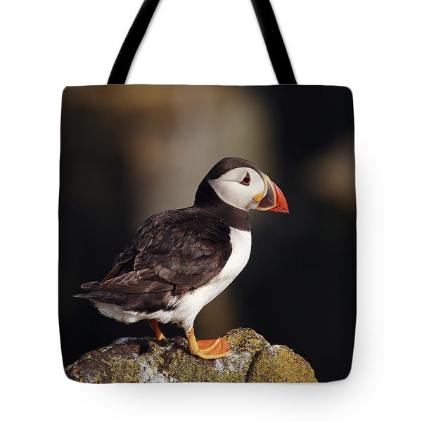Puffin On Rock Tote Bag