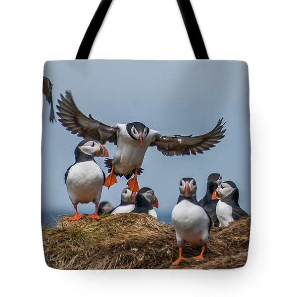 Puffins Tote Bag by Brian Tarr