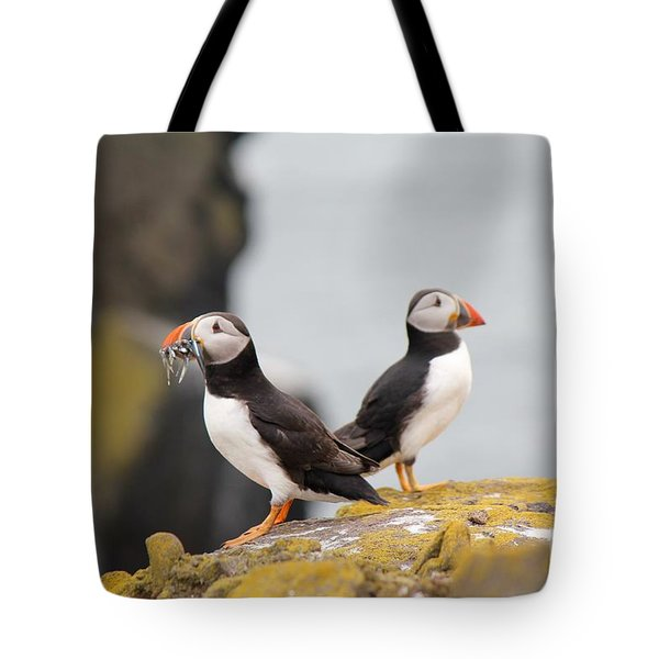 Puffin's Tote Bag by David Grant