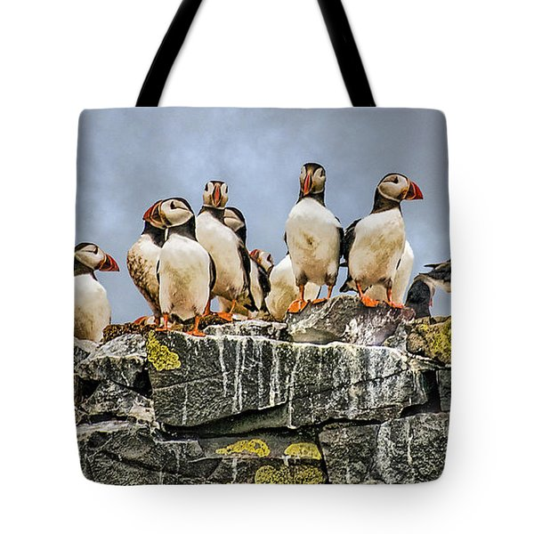 Tote Bag featuring the photograph Puffin's Rock by Brian Tarr