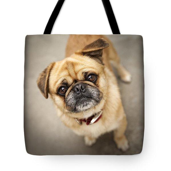 Pug Dog 2 Tote Bag