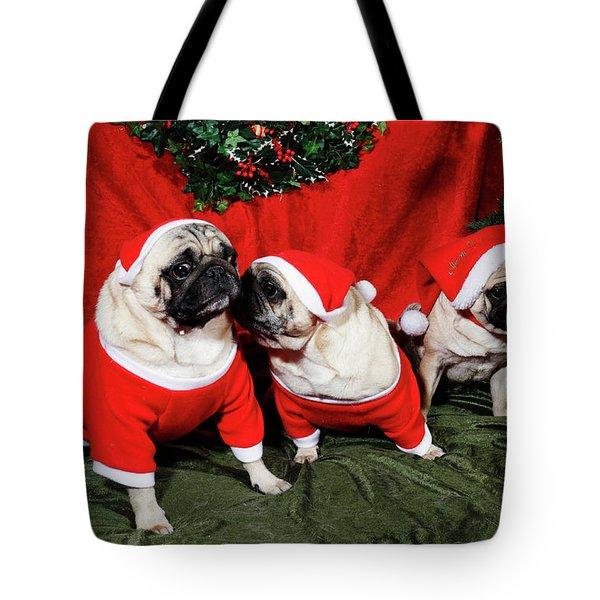 Pugs Dressed As Father-christmas Tote Bag