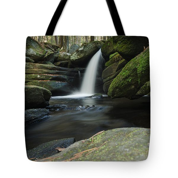 Pulpit Falls View Tote Bag