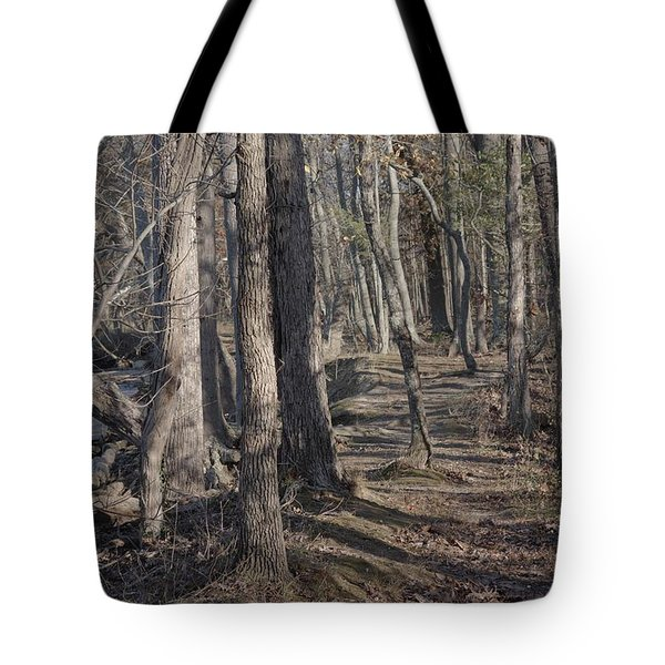 Pumpkin Ash Trail Tote Bag